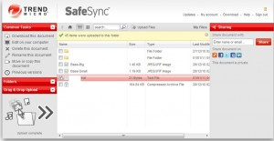 Safe Sync web application